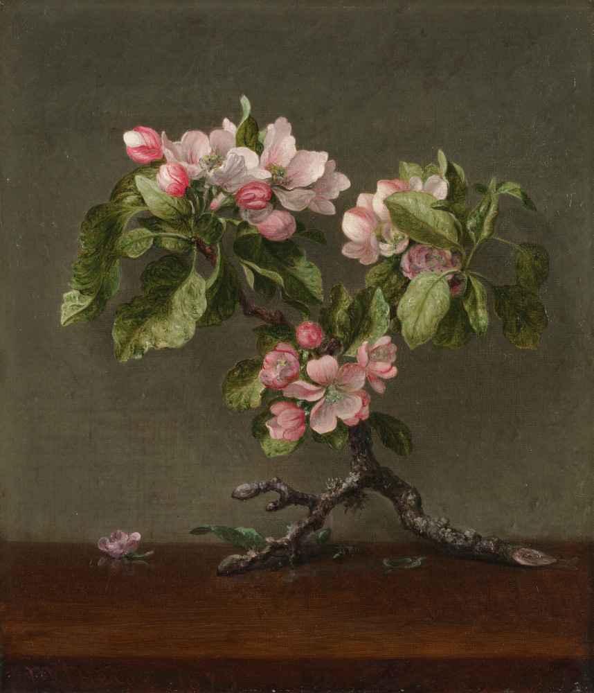 Apple Blossoms - Martin Johnson Heade