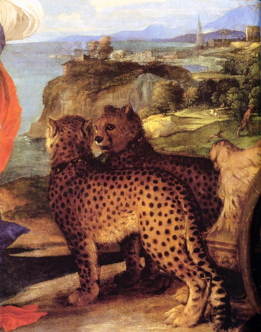 Bacchus and Ariadne detai - Titian