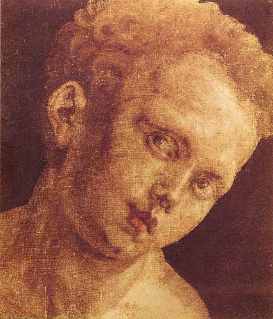 Boy s head tilted to the right - Durer