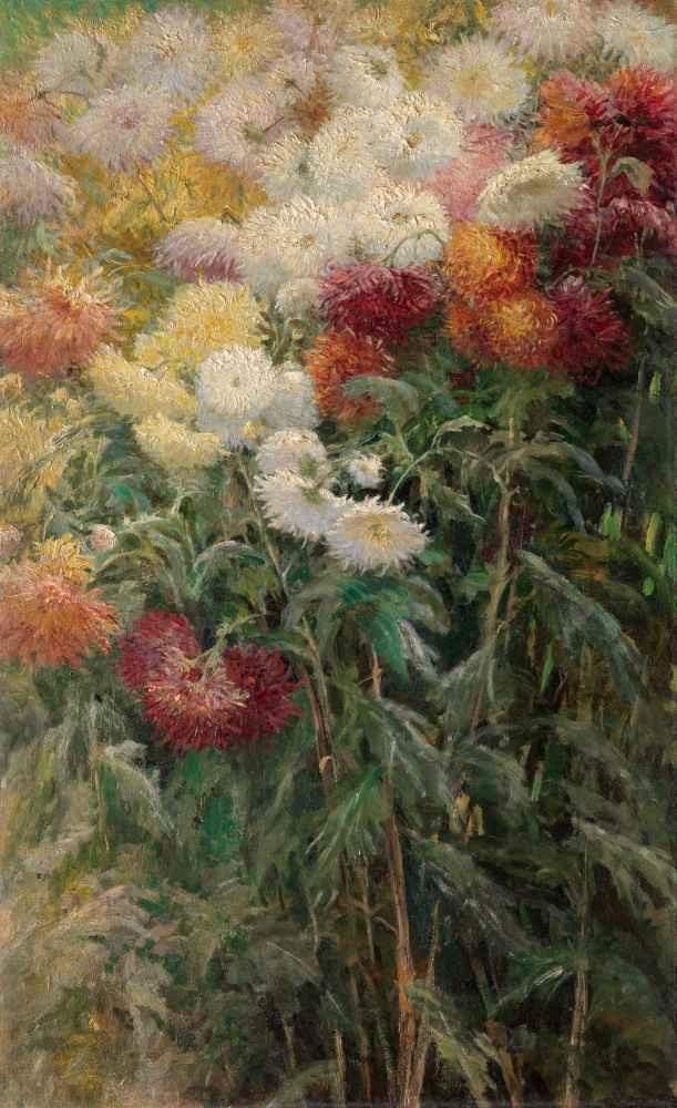 Chrysanthemums in the Garden at Petit-Gennevilliers - Gustave Caillebo