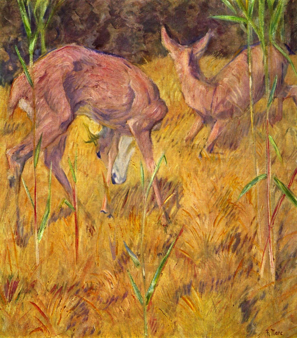 Deer in the reed - Marc