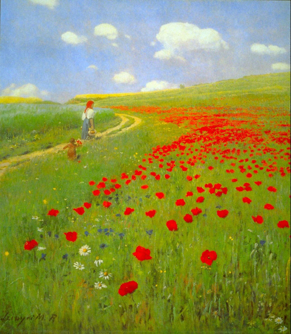 Field of Poppies - Merse