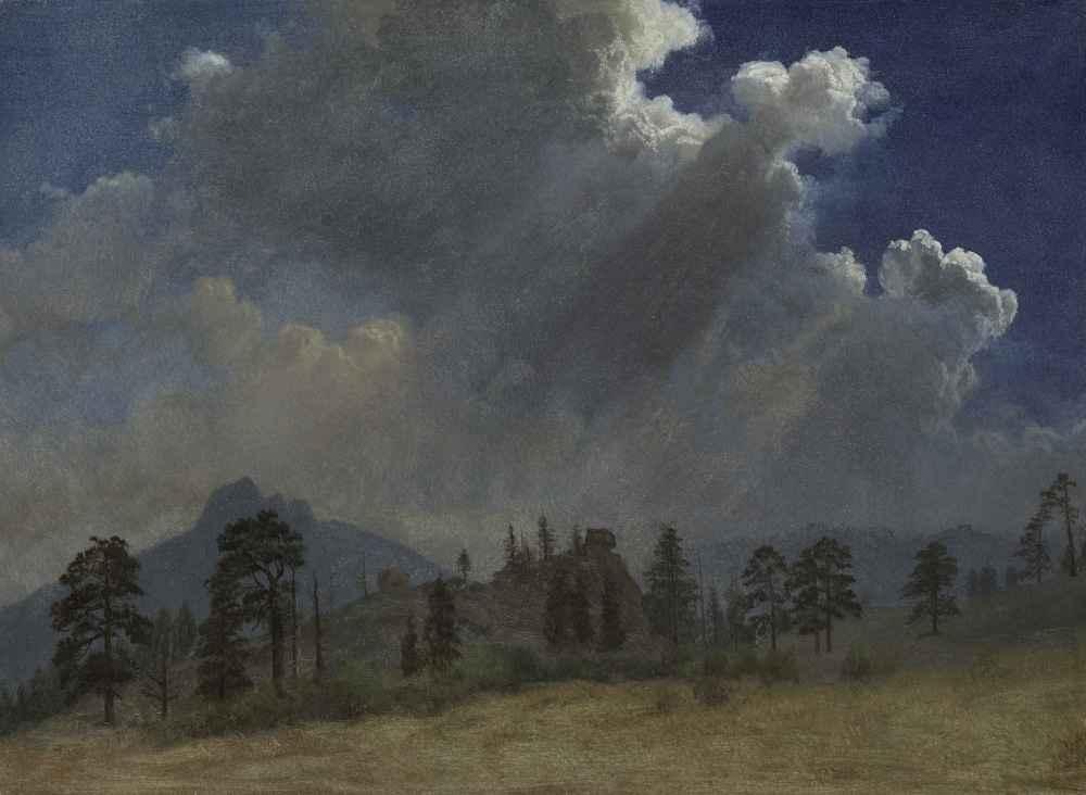 Fir Trees and Storm Clouds 2 - Albert Bierstadt