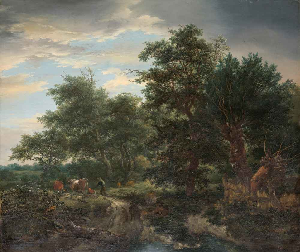 Forest scene - Jacob van Ruisdael