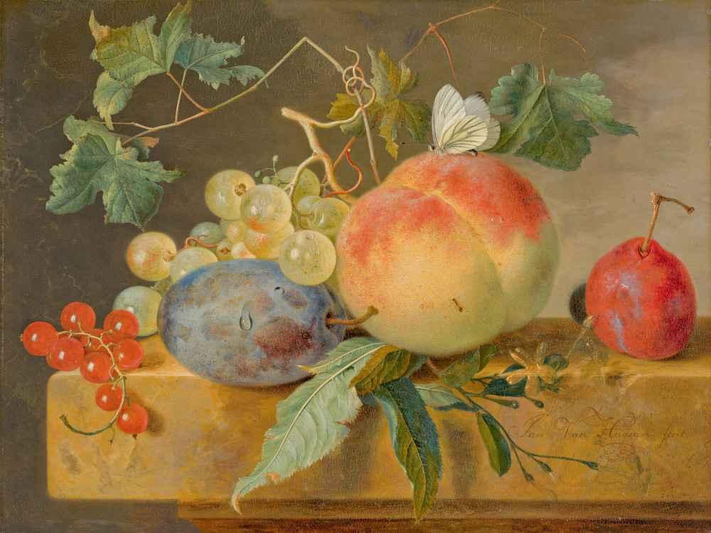 Fruit Still Life - Jan van Huysum