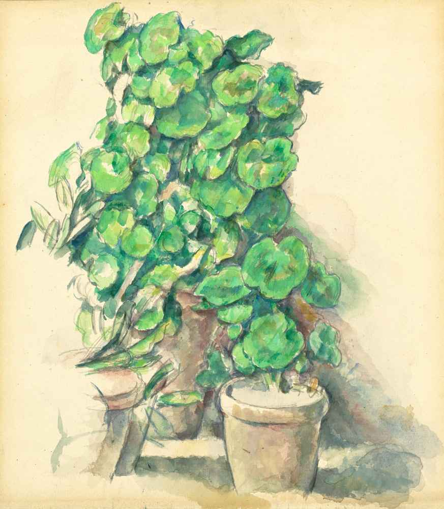 Geraniums - Paul Cezanne