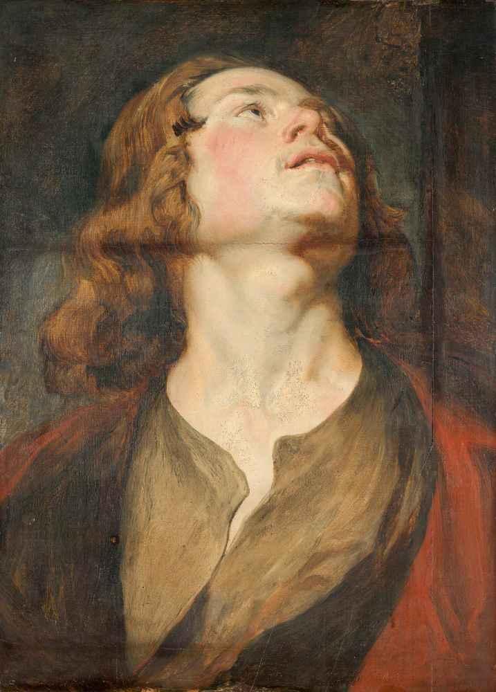 Head of Saint John - Antoon van Dyck
