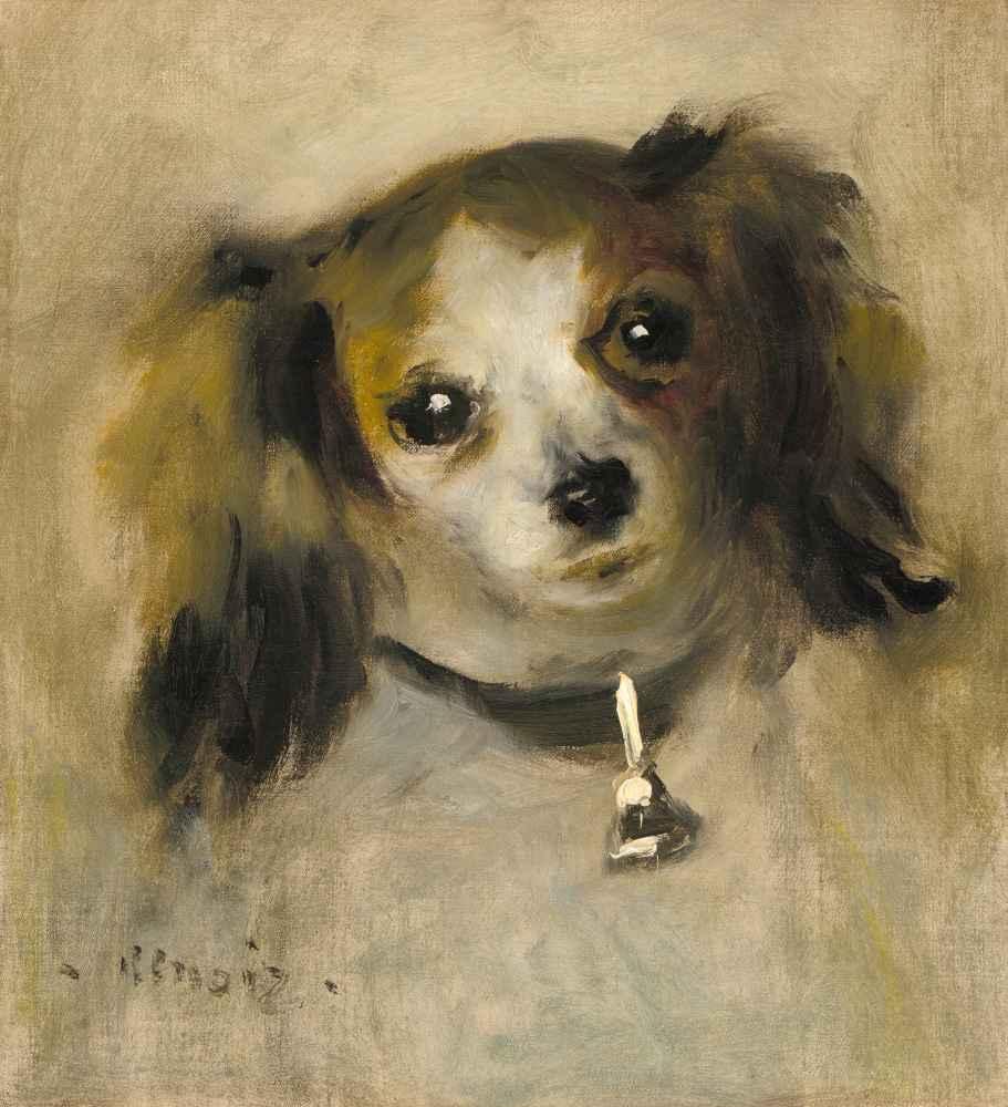 Head of a Dog - Auguste Renoir