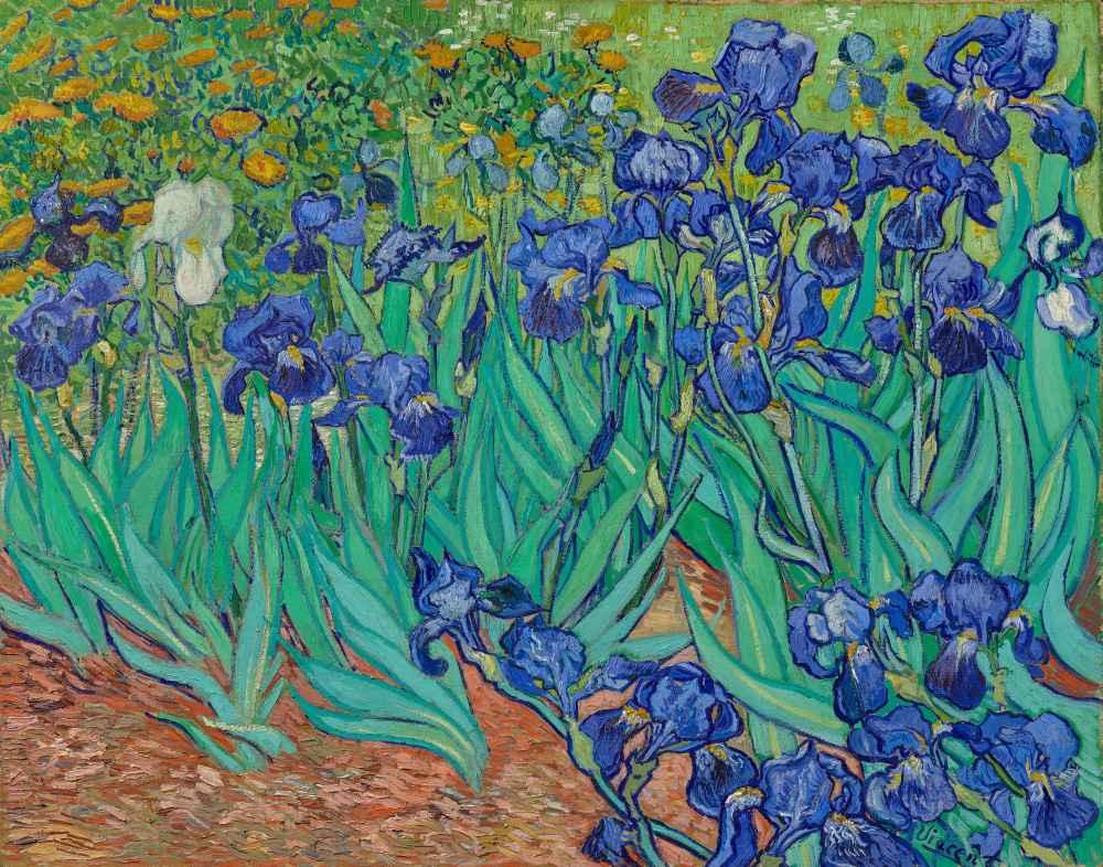 Irises 2 - Vincent van Gogh