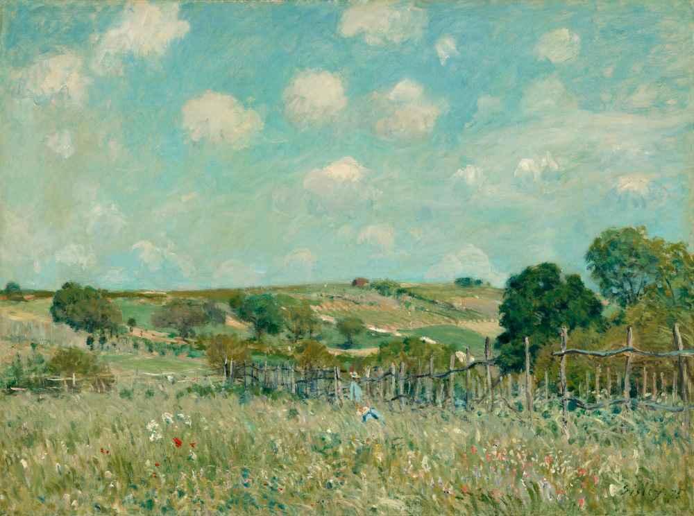 Meadow - Alfred Sisley