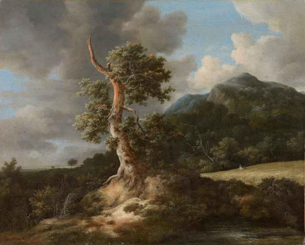 Mountainous Landscape with a Blasted Oak Tree - Jacob van Ruisdael