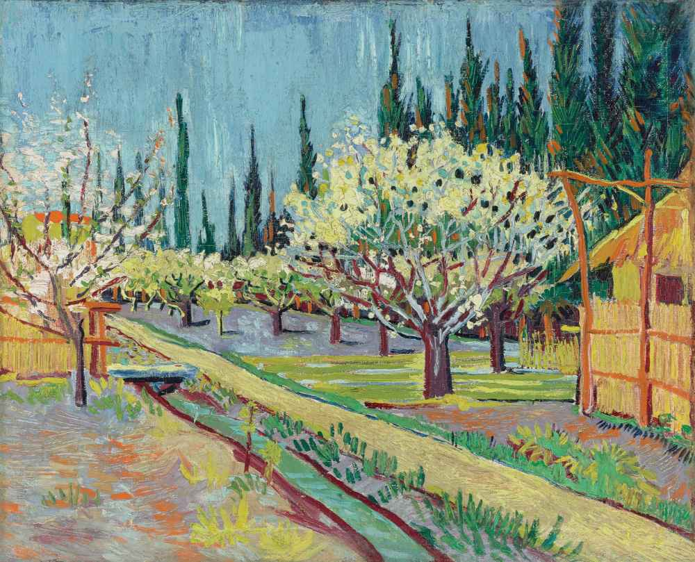 Orchard Bordered by Cypresses - Vincent van Gogh