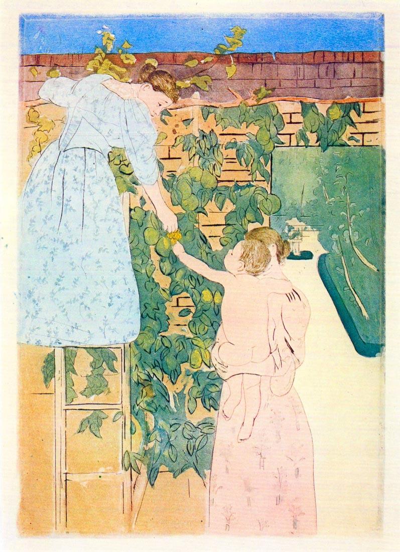 Picking Fruit - Cassatt