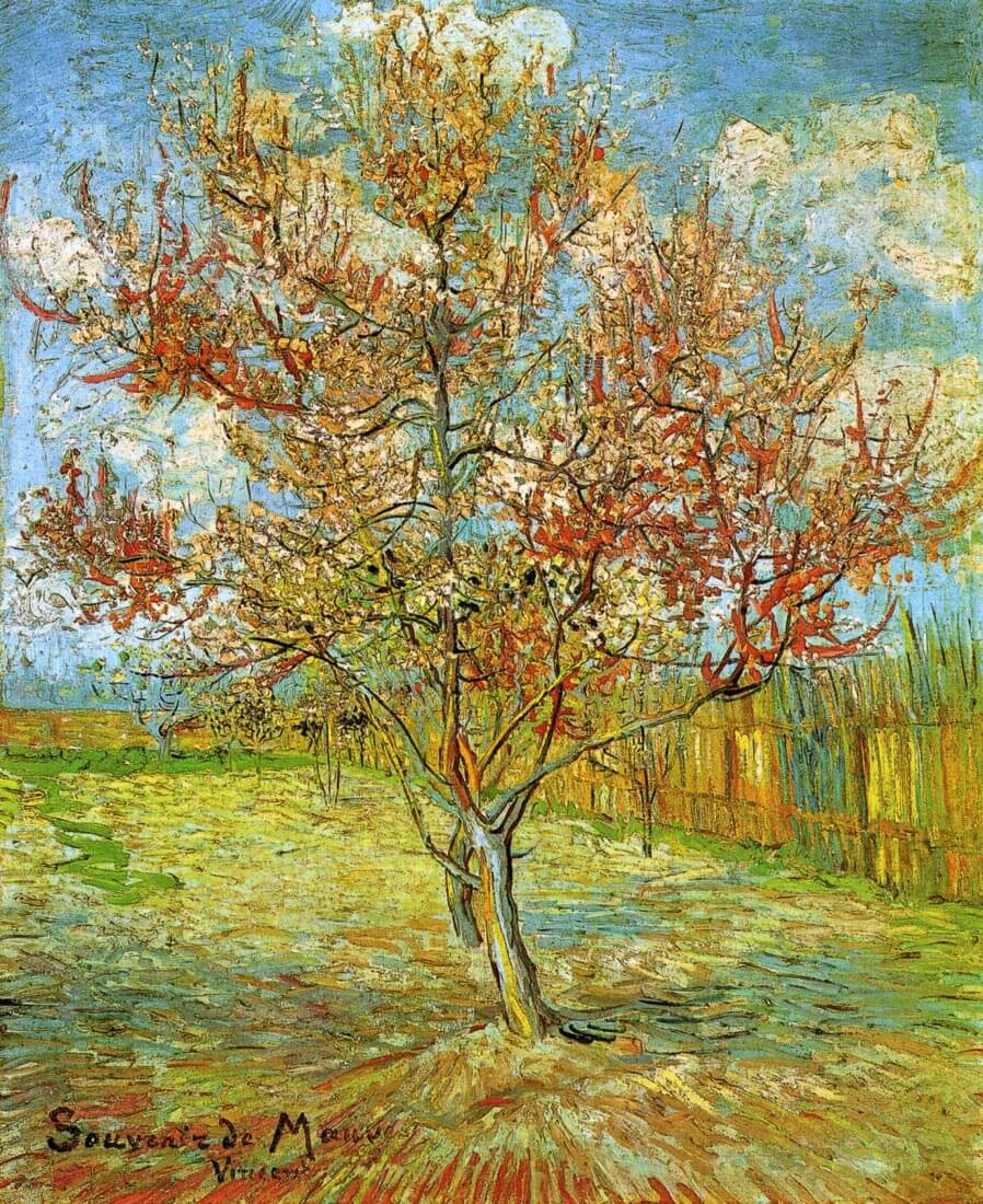 Pink Peach Tree in Blossom Reminiscence of Mauve - Van Gogh
