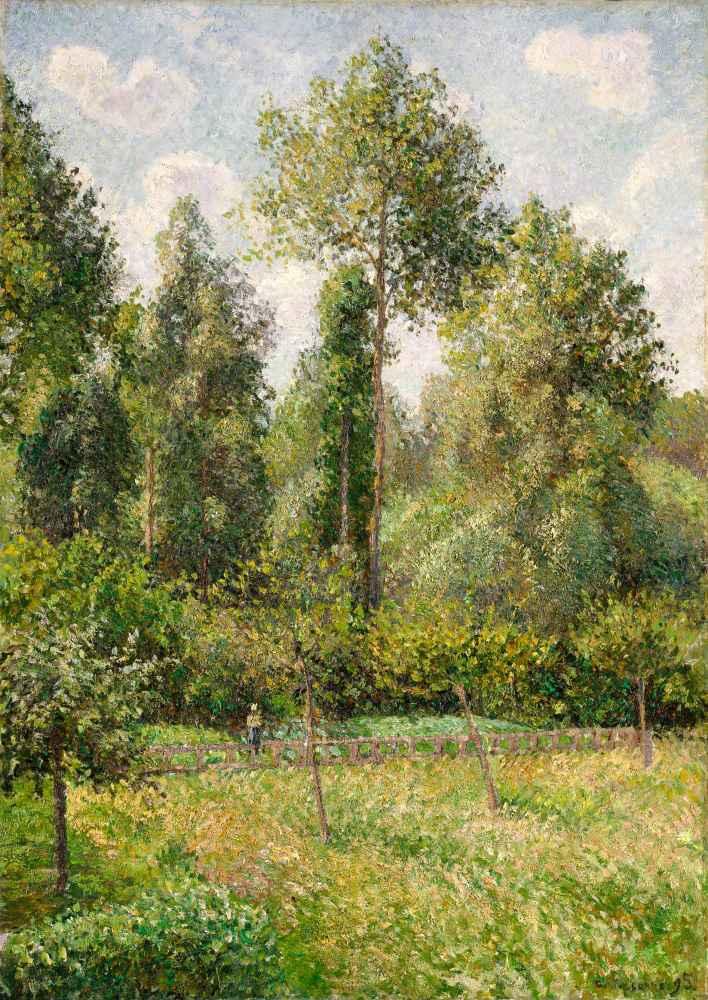 Poplars, Éragny - Camille Pissarro