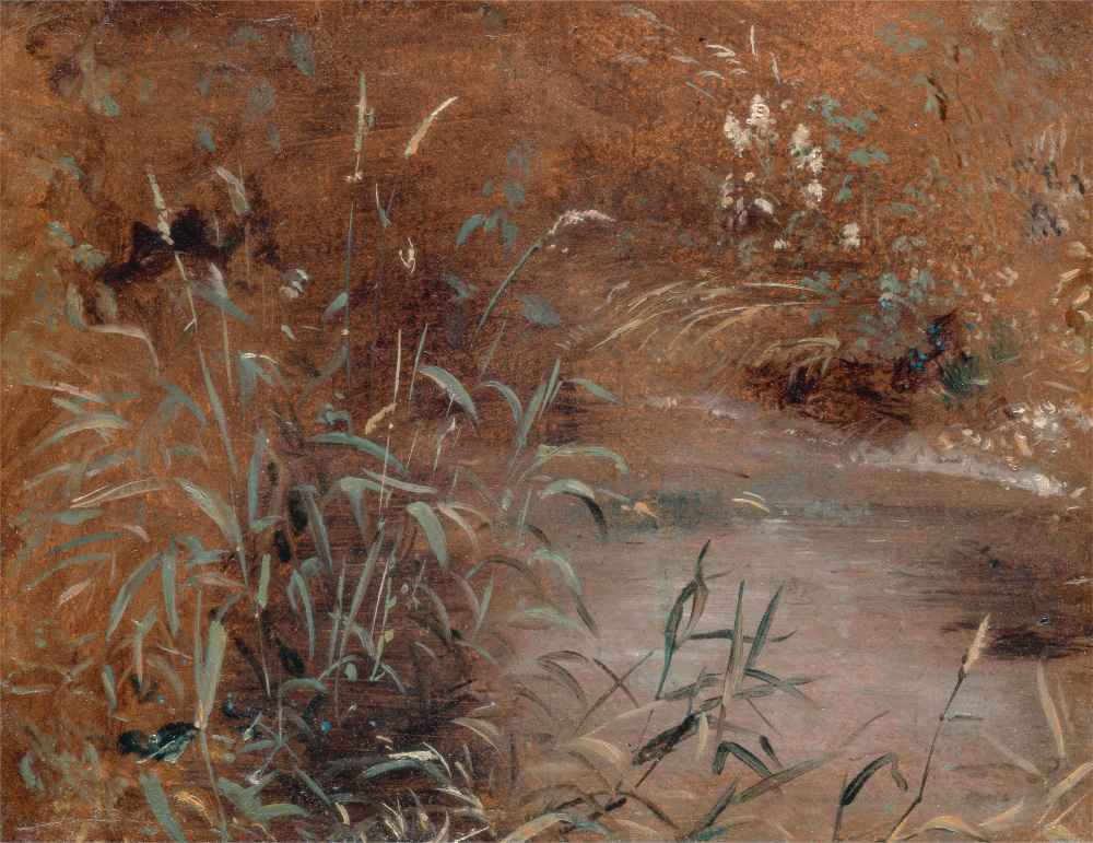 Rushes by a pool - John Constable