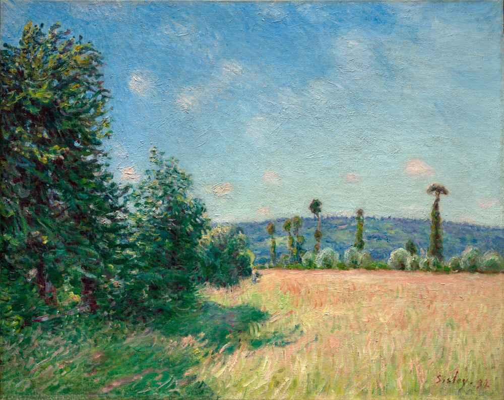 Sahurs Meadows in Morning Sun - Alfred Sisley