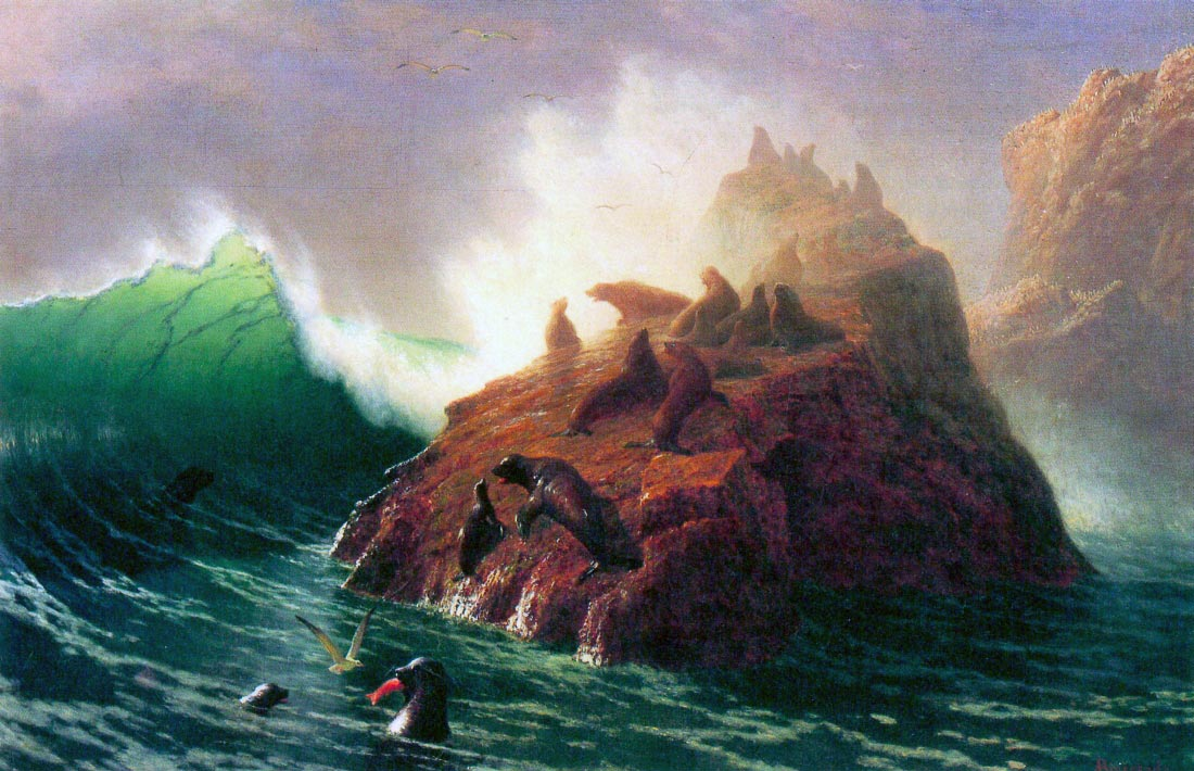 Seal Rock, California - Bierstadt