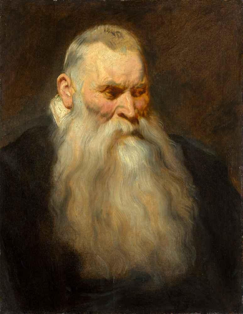Study Head of an Old Man with a White Beard - Antoon van Dyck