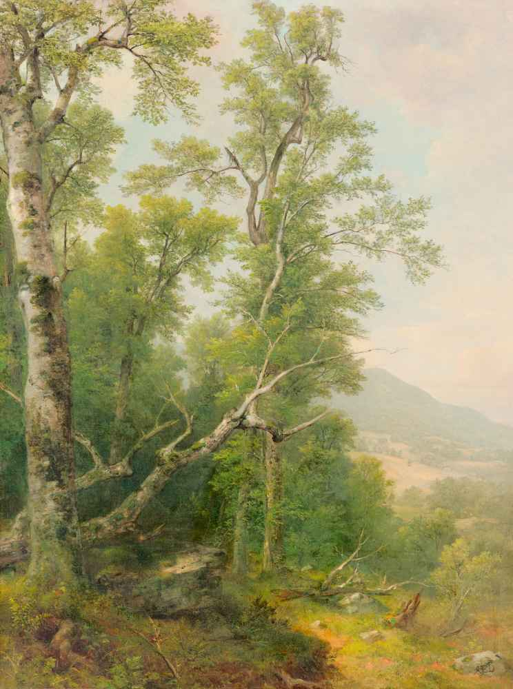 Study of Trees - Asher Brown Durand