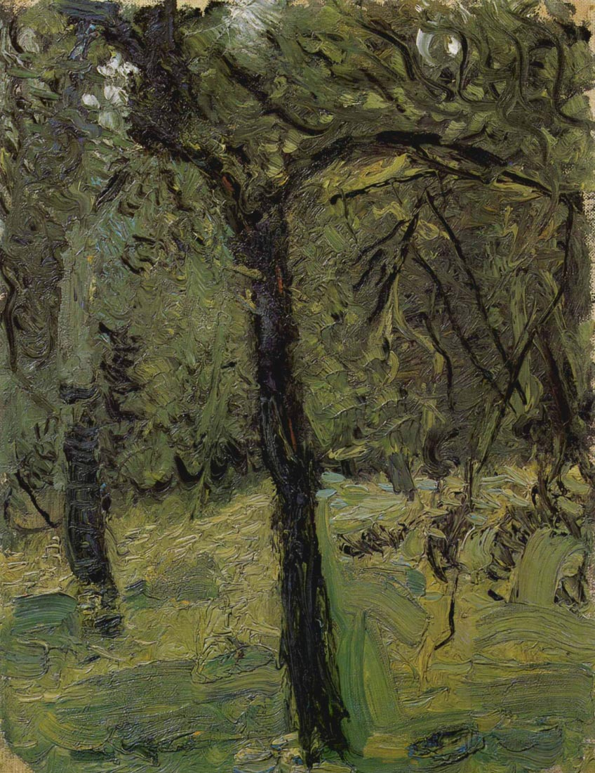 Sunny Meadow with fruit trees - Gerstl