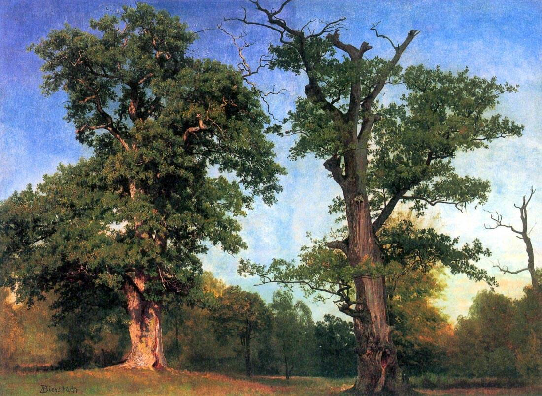 The pioneers of forests - Bierstadt