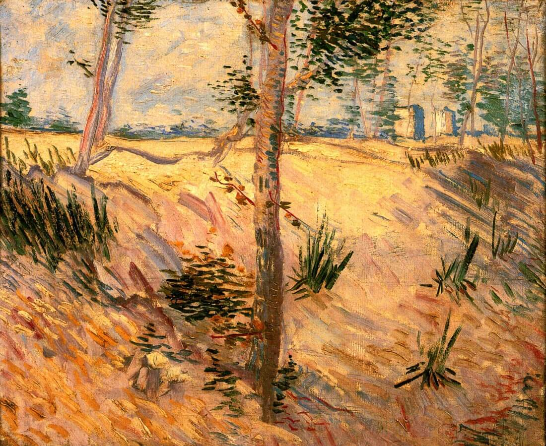 Trees in a Field on a Sunny Day - Van Gogh