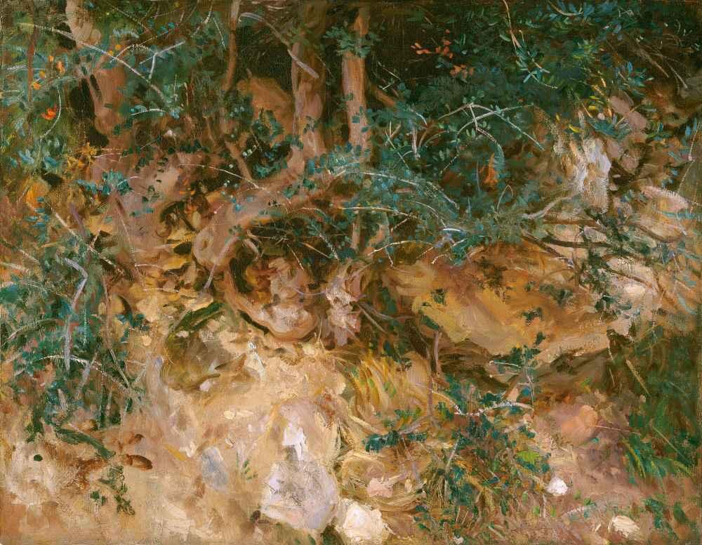 Valdemosa, Majorca - Thistles and Herbage on a Hillside - John Singer